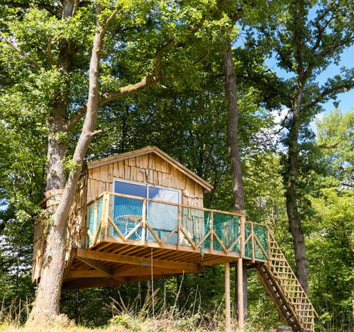 Atypical cabins in Alsace: Suspended in the Trees Hut Robin Hood